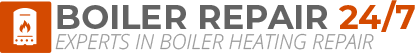 Norwich Boiler Repair Logo